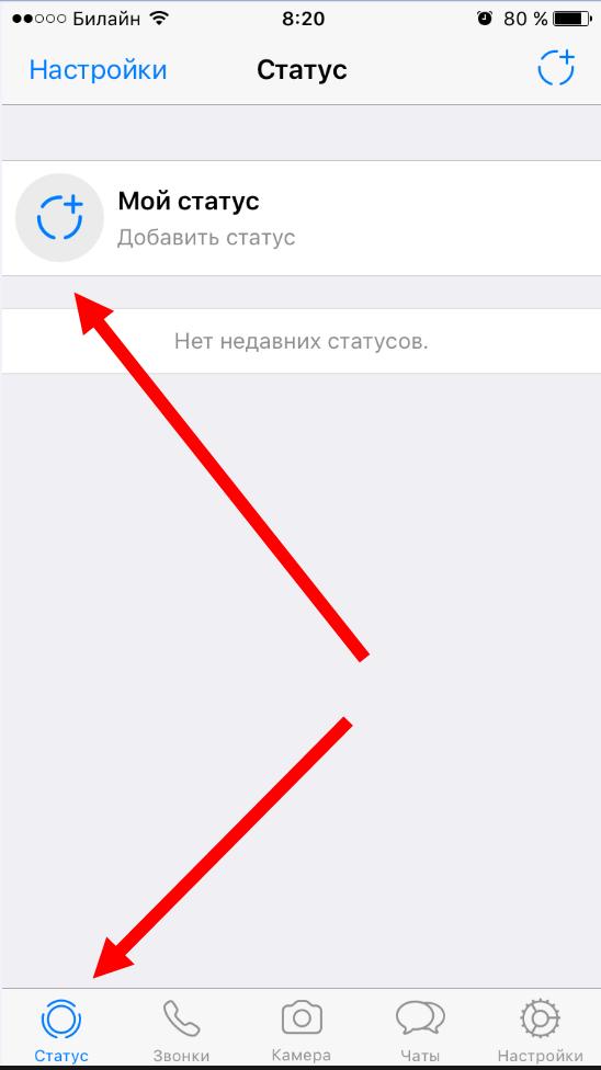 статусы вацап на айфоне